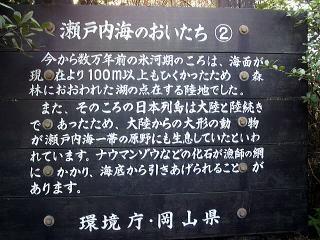 20110110113300001.jpg
